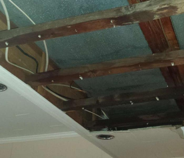 Water Damage Can Mean Mold Problems