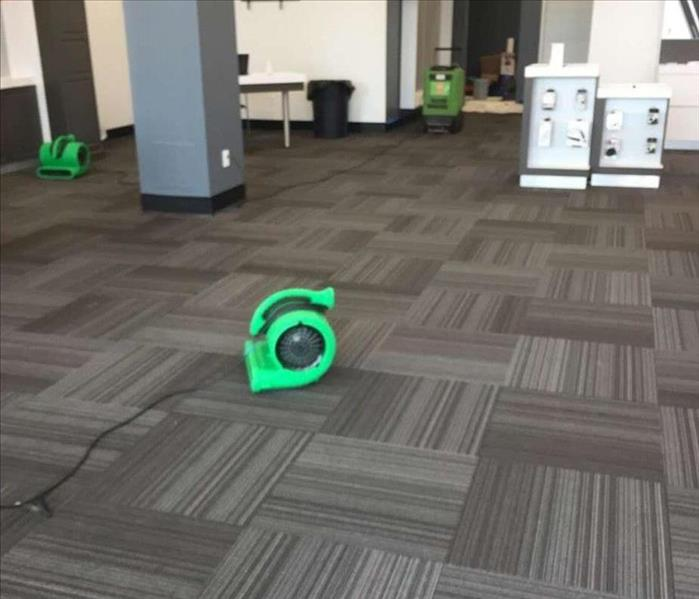 Commercial Commercial Carpet Cleaning