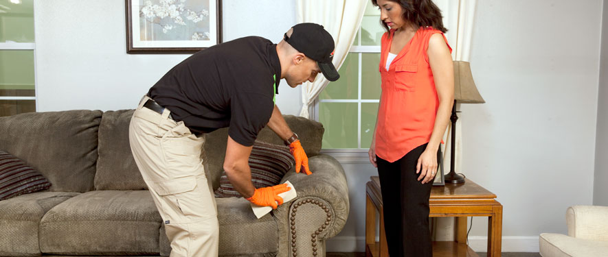 Meriden, CT carpet upholstery cleaning