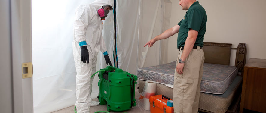 Meriden, CT mold removal process